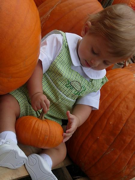 Mommy took me to my first pumpkin patch